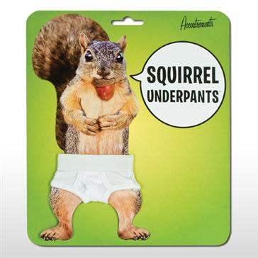 What's the biggest problem in the world today? Naked squirrels!