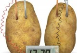 Toysmith-4M-Potato-Clock